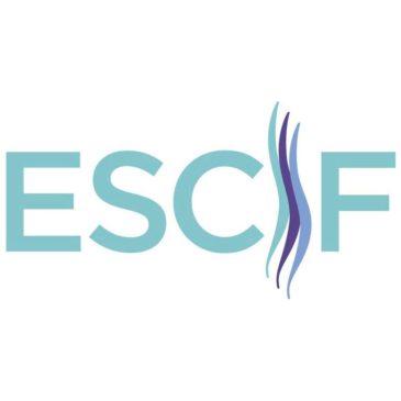 Federación Europea de Lesionados Medulares (ESCIF)
