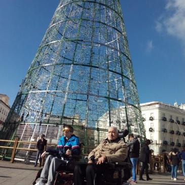 Taller de transporte independiente en Navidad